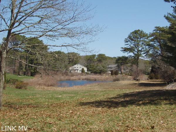 Hidden Cove Pond View