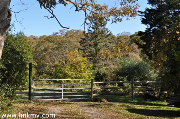 West Tisbury Marthas Vineyard Property for Sale