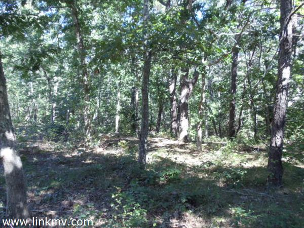 West Tisbury martha's vineyard land for sale 25576