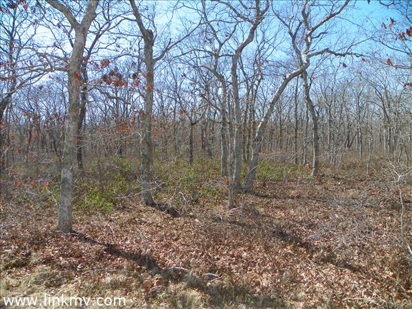 Beautifully private surrounded by acres of conservation land
