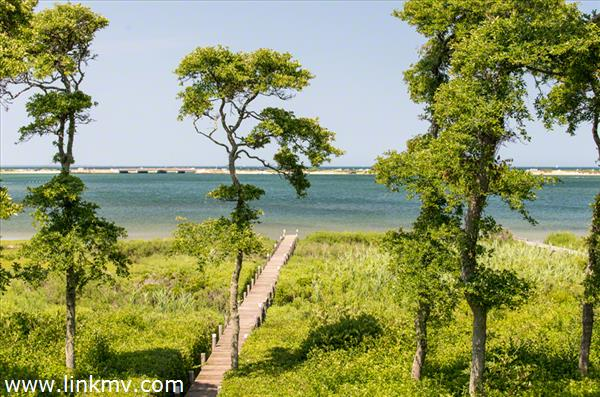 Edgartown real estate 27086