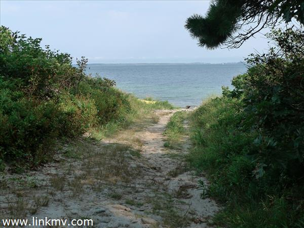 Vineyard Haven real estate 27098