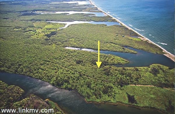 West Tisbury real estate 28709