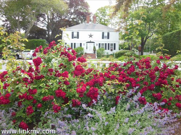 Vineyard Haven real estate 28797