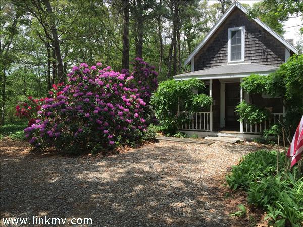 Oak Bluffs real estate 28990