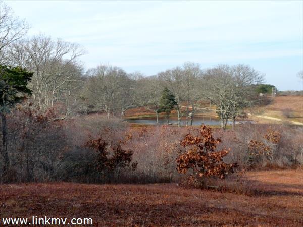 11 High Meadow Lane Marthas Vineyard MA