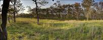 West Tisbury Land for sale martha's vineyard picture 5