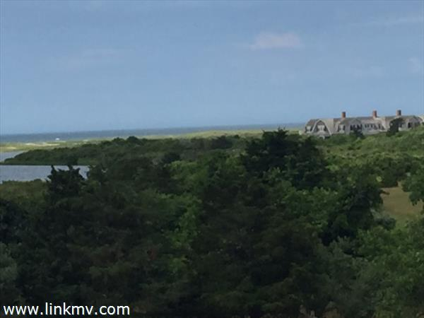 36 Great Plains Way, Edgartown, MA