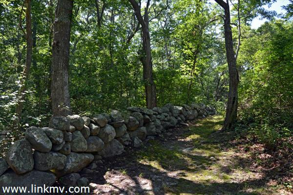 Aquinnah martha's vineyard land for sale 31369