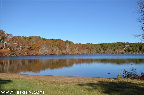 Fresh Water Pond