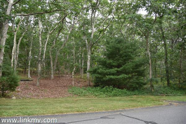 Oak Bluffs martha's vineyard land for sale 31895