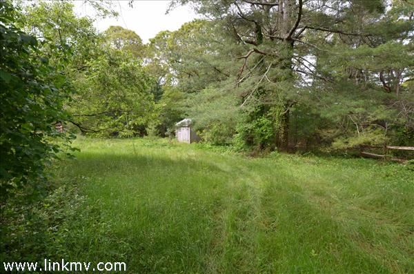 martha's vineyard Land home for sale 32119