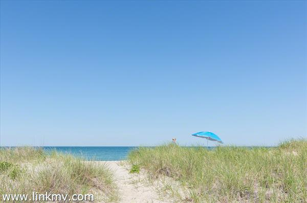 Oak Bluffs real estate 32154