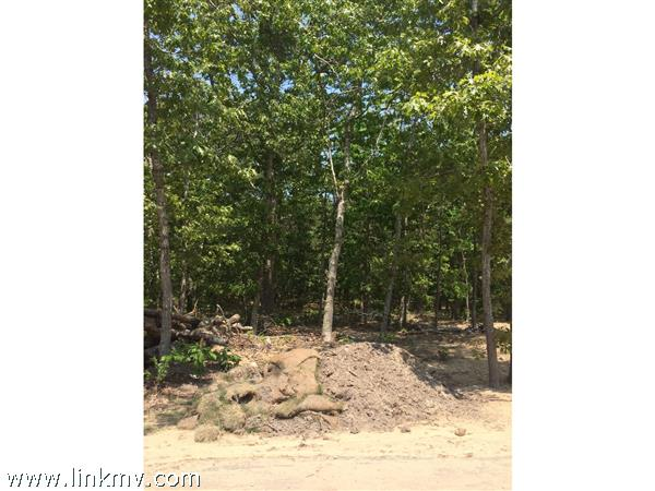 martha's vineyard Land home for sale 32161