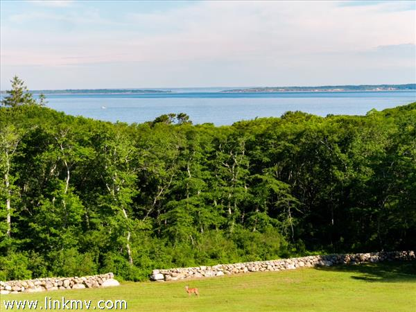 Chilmark waterview farm near Menemsha