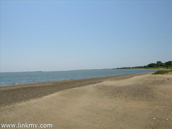 The Pond looking towards the South Shore beach