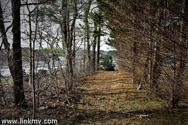 Subdivision Path to Sengekontacket Pond