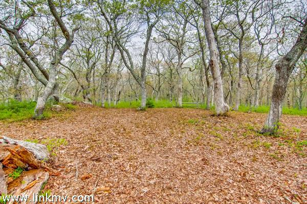 Chilmark Land for sale