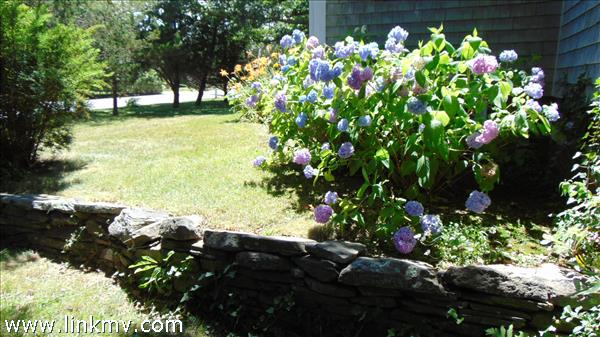 MH Mature Plantings &  Stone Walls