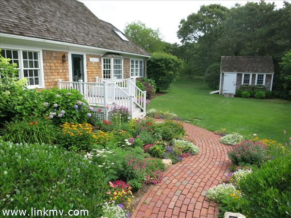 Garden walkway to house and garden shed.