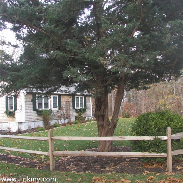 Front of the house with split rail fence